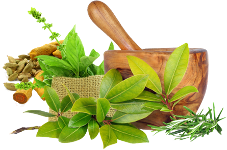 Ayurvedic Medicine For Healthy Body